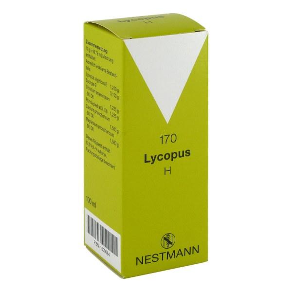 Lycopus H Nummer  170 Tropfen